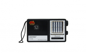 Radio Leotec