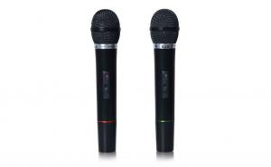 Set 2 microfoane