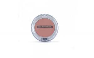 Fard de obraz Natural Matte Silky Blusher,Seventeen,15 Pale Rose,6 g