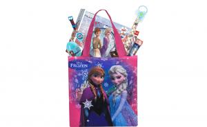 Set cadou printesa Elsa Frozen