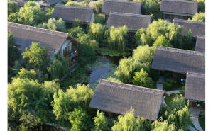 Green Village Resort 4*, Cazare Romania, Delta Dunarii