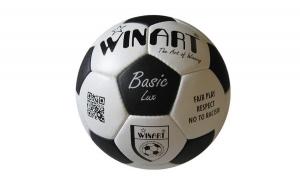 Minge fotbal din piele naturala - Winart basic lux, marimea 5