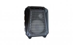 Boxa portabila-KTS 949 S