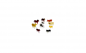 Set 10 animale domestice