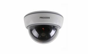 Camera de supraveghere falsa tip dome pentru interior, Dummy Cam DS-1500B