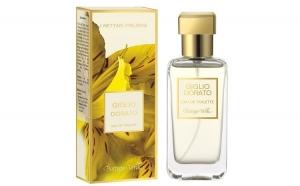 Nectaruri pretioase - Crin auriu - Apa, Parfumuri
