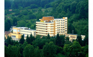 Hotel Germisana 4*