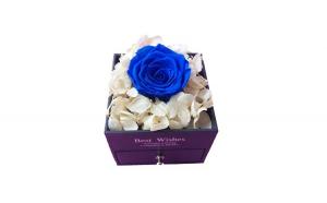Trandafir Criogenat albastru cu