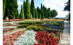 Bulgaria MTS Travel - TO ert