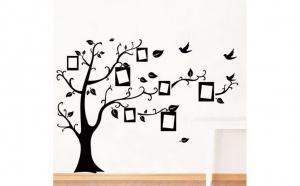 Copac Rame foto