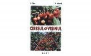 Ciresul si visinul, autor Lenuta Chira
