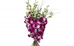 Buchet de 9 orhidee