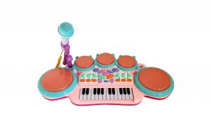 Orga cu microfon si acumulatori