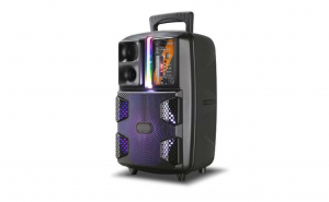Boxa audio portabila activa PK 16