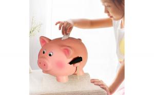 Pusculita Porcusor roz cu tarc din lemn