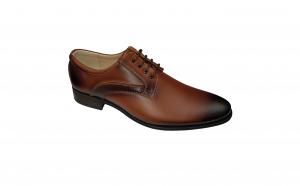 Pantofi barbatesti eleganti