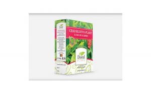 Ceai silueto-plant (cura de slabire)