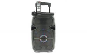 Boxa Activa Portabila Tip Troller, Radio FM, Bluetooth, USB, TF Card, Aux, Lumini LED, Microfon Inclus, Telecomanda, Neagra