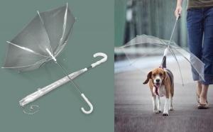 Umbrela pentru caini la doar 49 RON in loc de 89 RON