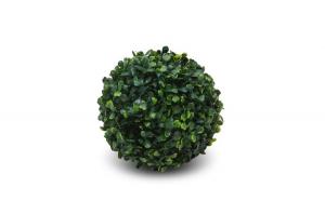 Cimişir artificial - mediu
