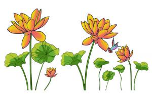 Sticker decorativ, Flore portocalie, 150