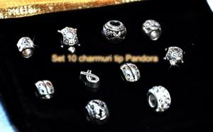 Charmuri/Talismane pentru bratari- 10 buc, la 48 RON in loc de 110 RON