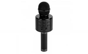 Microfon karaoke fara fir  port USB