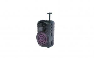 Boxa wireless tip troler, 120 W P.M.P.O
