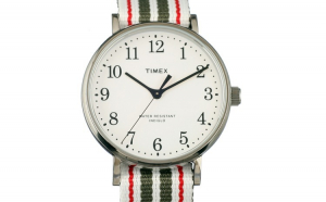Ceas TIMEX ARCHIVE Model FAIRFIELD VILLAGE TW2T98100LG