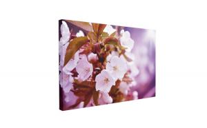 Tablou Canvas Cherry Blossoms, 50 x 70 cm, 100% Bumbac
