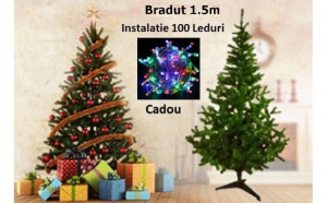 Brad 1.5 M