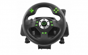 Volan si pedale racing games PC, PS3,, #StamAcasa, Jocuri pentru toti
