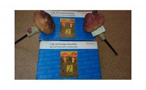 2 ciuperci gradina