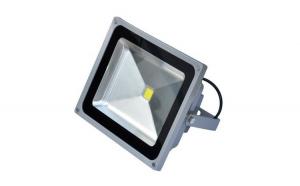 Proiector LED 30W, lumina alb rece