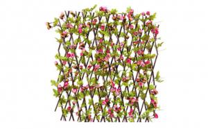 Gard cu trandafiri
