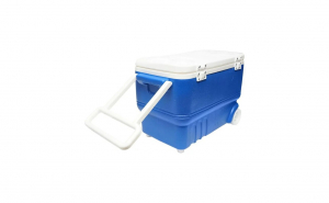 Lada frigorifica pentru picnic, 38L