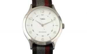 Ceas TIMEX ARCHIVE Model WHITNEY VILLAGE TW2T97100LG