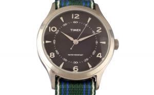 Ceas TIMEX ARCHIVE Model WHITNEY VILLAGE TW2T97200LG