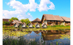 Green Village Resort 4*