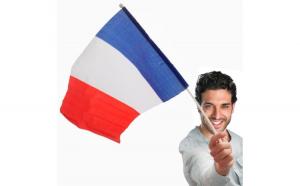 Steagul Franței cu