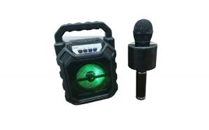 Pachet Promotional: Boxa Activa Portabila + Microfon Wireless