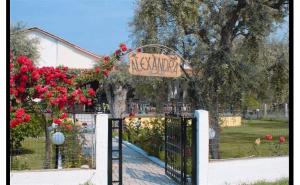 Vila Alexandra 2*, Early Booking, Early Booking Grecia