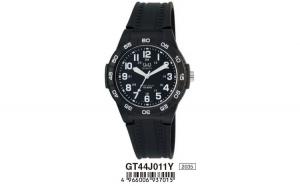 Ceas Barbati, Q&Q FASHION GT44J011Y