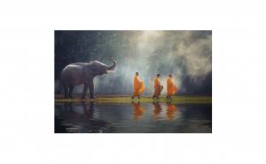 Tablou Canvas Cei 4 prieteni 95 x 125 cm