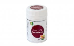 Normal Colesterol