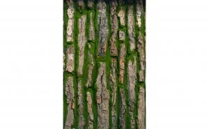Placa muschi artificial cu insertii lemn 50 x 100 cm