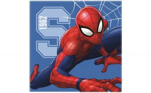 Prosopel magic Spiderman 30x30 cm