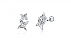 Cercei din argint 925 Sparkling Star Meteor Luminous Crystal