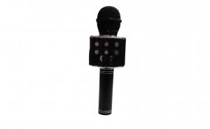 Microfon boxa-858
