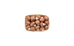 Ciuperci Champignon brune, caserola 500gr